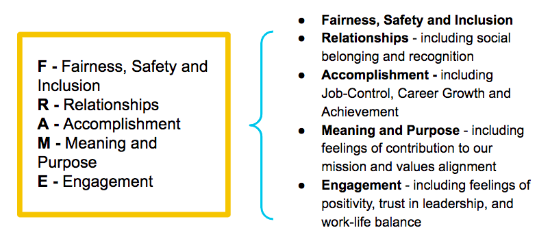 FRAME Model of Well-being